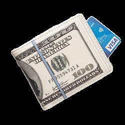 DOLAROWY PORTFEL Banknoty...