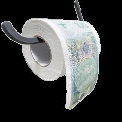 Papier Toaletowy 100zł XL...