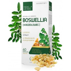 BOSWELLIA Boswelia serrata...