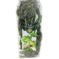 Cannabis sativa Herbata...