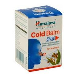 Himalaya Balsam...